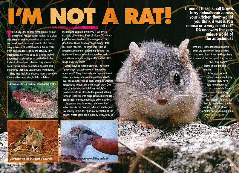 I'm Not A Rat feature for Disney Adventures Magazine